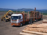 Pictures of Scania R144G 460 6x4 Timber Truck ZA-spec 1995–2004