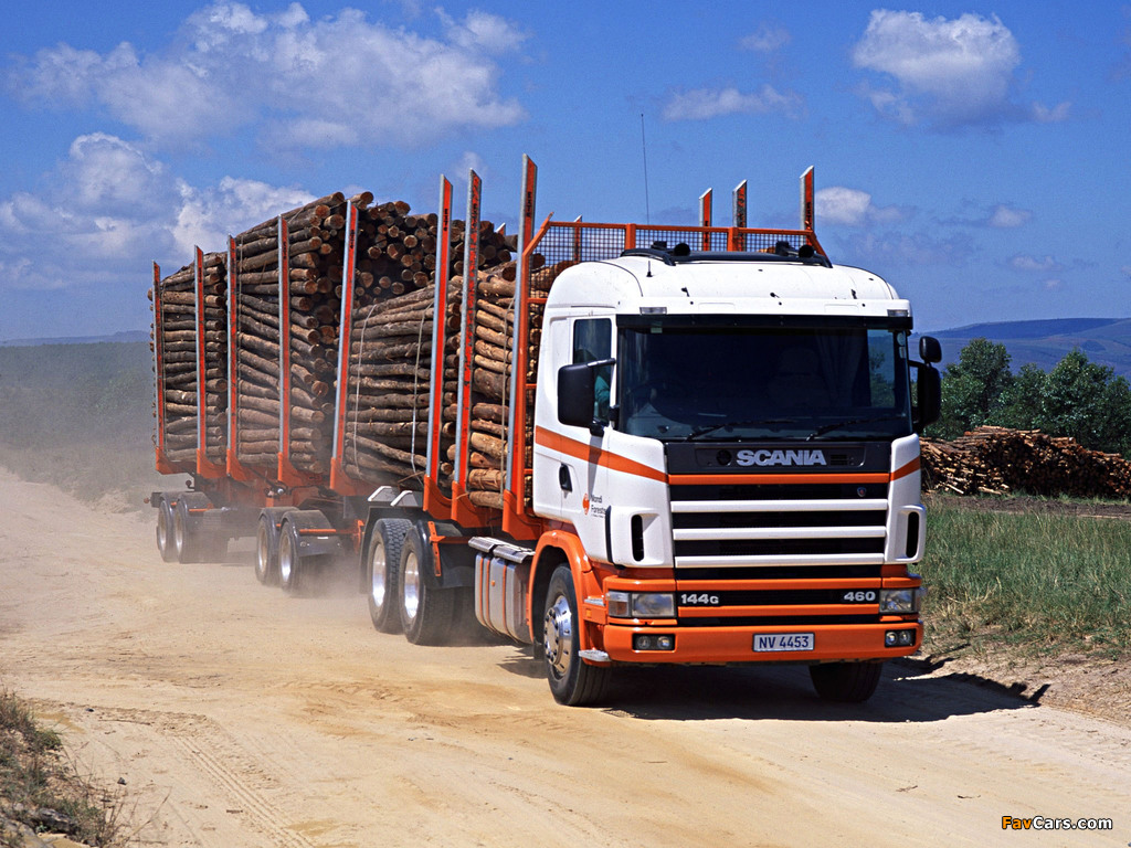 Pictures of Scania R144G 460 6x4 Timber Truck ZA-spec 1995–2004 (1024 x 768)