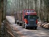 Photos of Scania R500 6x2 Highline Timber Truck 2004–09