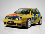 Pictures of Seat Ibiza Kit Car Evo 1995–2000