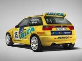Seat Ibiza Kit Car Evo 1995–2000 pictures