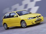 Seat Ibiza Cupra R 2001 pictures