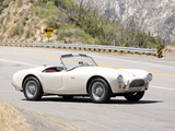 Images of Shelby Cobra 289 (MkII) 1963–65
