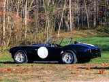 Pictures of Shelby Cobra 289 Factory Competition (#CSX 2032) 1962
