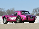 Pictures of Shelby Cobra Coupe Dragon Snake 1963