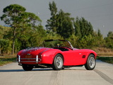 Pictures of Shelby Cobra 289 (CSX 2442) 1964