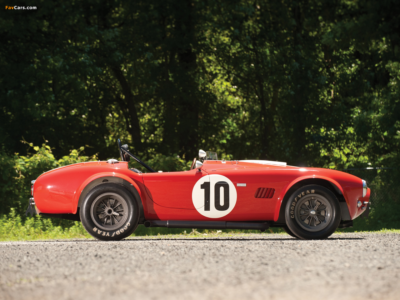 Pictures of Shelby Cobra Competition Roadster 1964 (1280 x 960)
