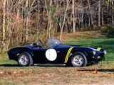 Shelby Cobra 289 Factory Competition (#CSX 2032) 1962 wallpapers