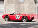 Shelby Cobra 289 Factory Team Car (#CSX 2129) 1963 pictures