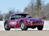 Shelby Cobra Coupe Dragon Snake 1963 wallpapers