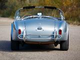 Shelby Cobra 289 (CSX 2411) 1964 images