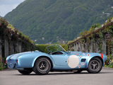 Shelby Cobra Competition Roadster 1964 photos