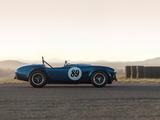 Shelby Cobra 289 (CSX 2473) 1964 photos