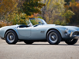 Shelby Cobra 289 (CSX 2411) 1964 pictures