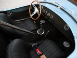 Shelby Cobra 289 FIA 50th Anniversary (CSX7000) 2014 photos