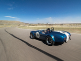 Shelby Cobra 289 (CSX 2473) 1964 wallpapers