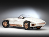 Images of Mercer Cobra Roadster by Virgil Exner (#CSX 2451) 1965
