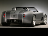 Shelby Cobra Concept 2004 photos
