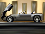 Shelby Cobra Concept 2004 wallpapers
