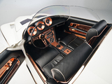 Mercer Cobra Roadster by Virgil Exner (#CSX 2451) 1965 wallpapers