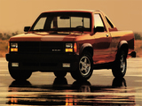 Pictures of Shelby Dakota 1989