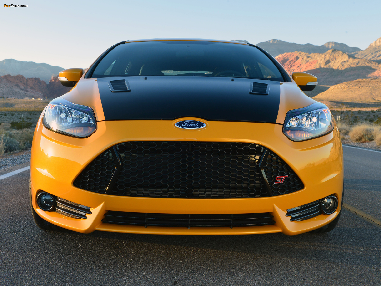 Images of Shelby Focus ST 2013 (1600 x 1200)