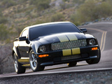 Photos of Shelby GT-H 2006