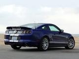 Shelby GT/SC 2014 photos