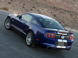 Shelby GT/SC 2014 pictures
