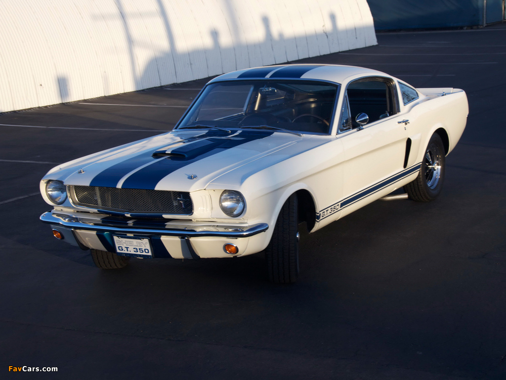 Images of Shelby GT350 Prototype 1965 (1024 x 768)