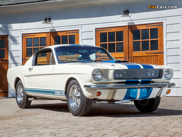 Photos of Shelby GT350 1965 (640 x 480)