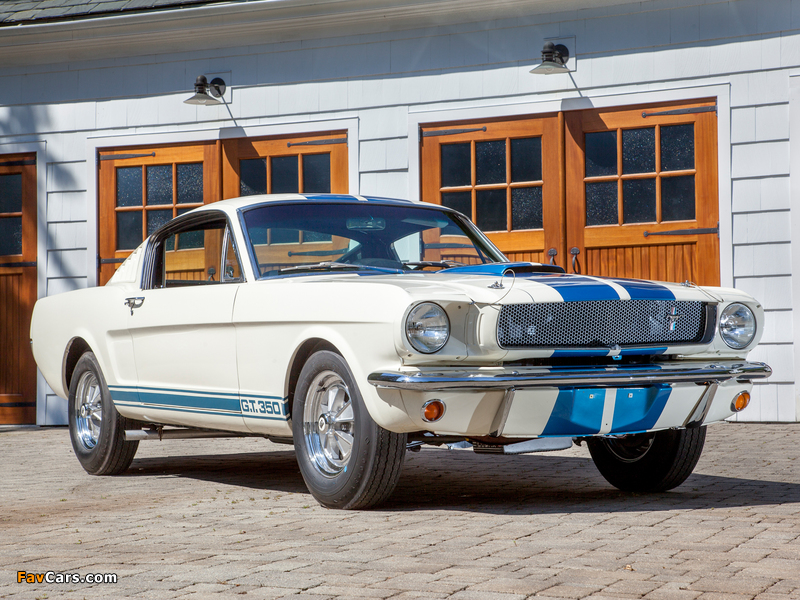 Photos of Shelby GT350 1965 (800 x 600)