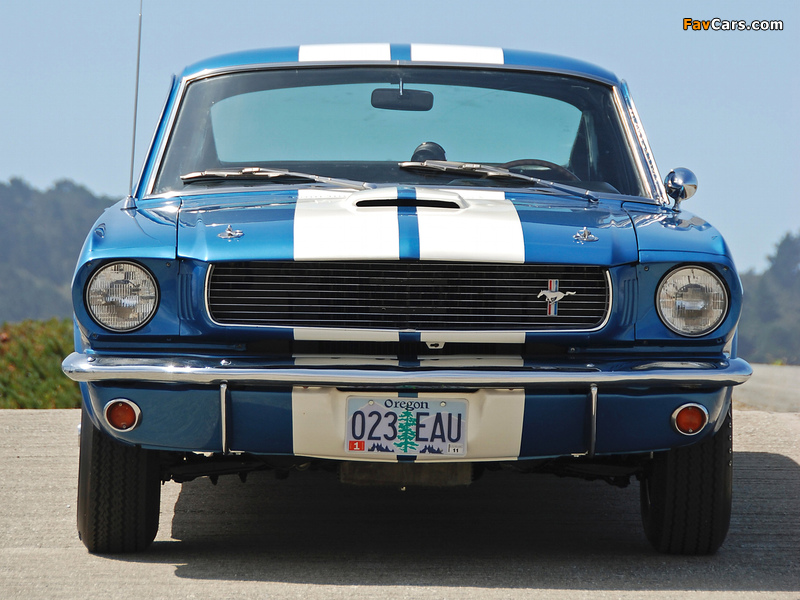 Pictures of Shelby GT350 1965 (800 x 600)