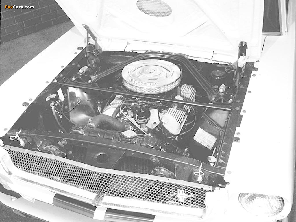 Shelby GT350 1965 photos (1024 x 768)