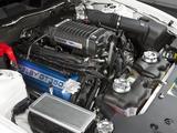 Shelby GT350 2010 photos