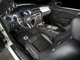 Shelby GT350 2010 pictures
