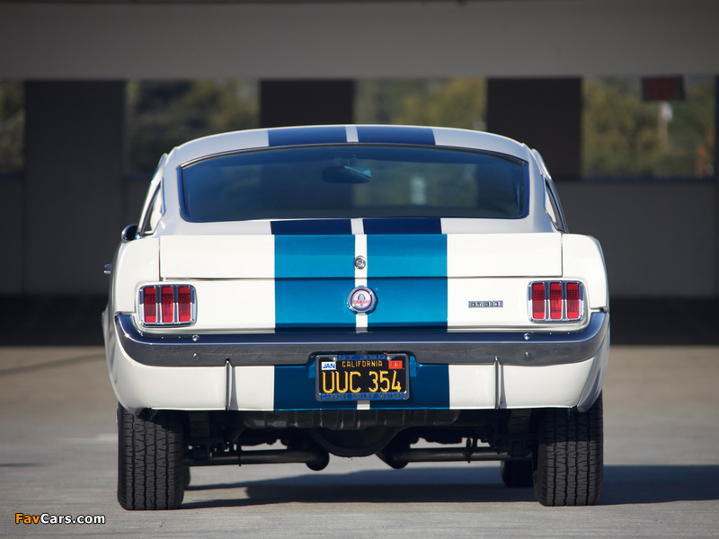 Shelby GT350 Prototype 1965 wallpapers (800 x 600)
