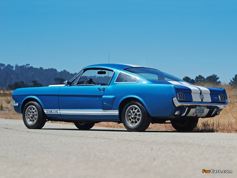 Shelby GT350 1965 wallpapers (800 x 600)