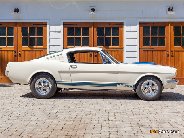 Shelby GT350 1965 wallpapers (640 x 480)