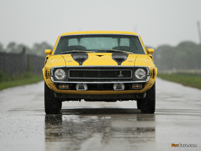 Shelby GT350 1969–70 wallpapers (800 x 600)