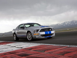 Images of Shelby GT500 KR 40th Anniversary 2008