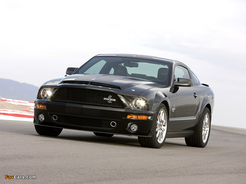 Shelby GT500 KR 40th Anniversary 2008 images (800 x 600)