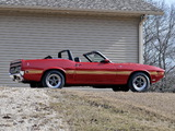 Images of Shelby GT500 Convertible 1969