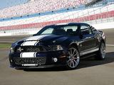 Images of Shelby GT500 Super Snake 2010–11