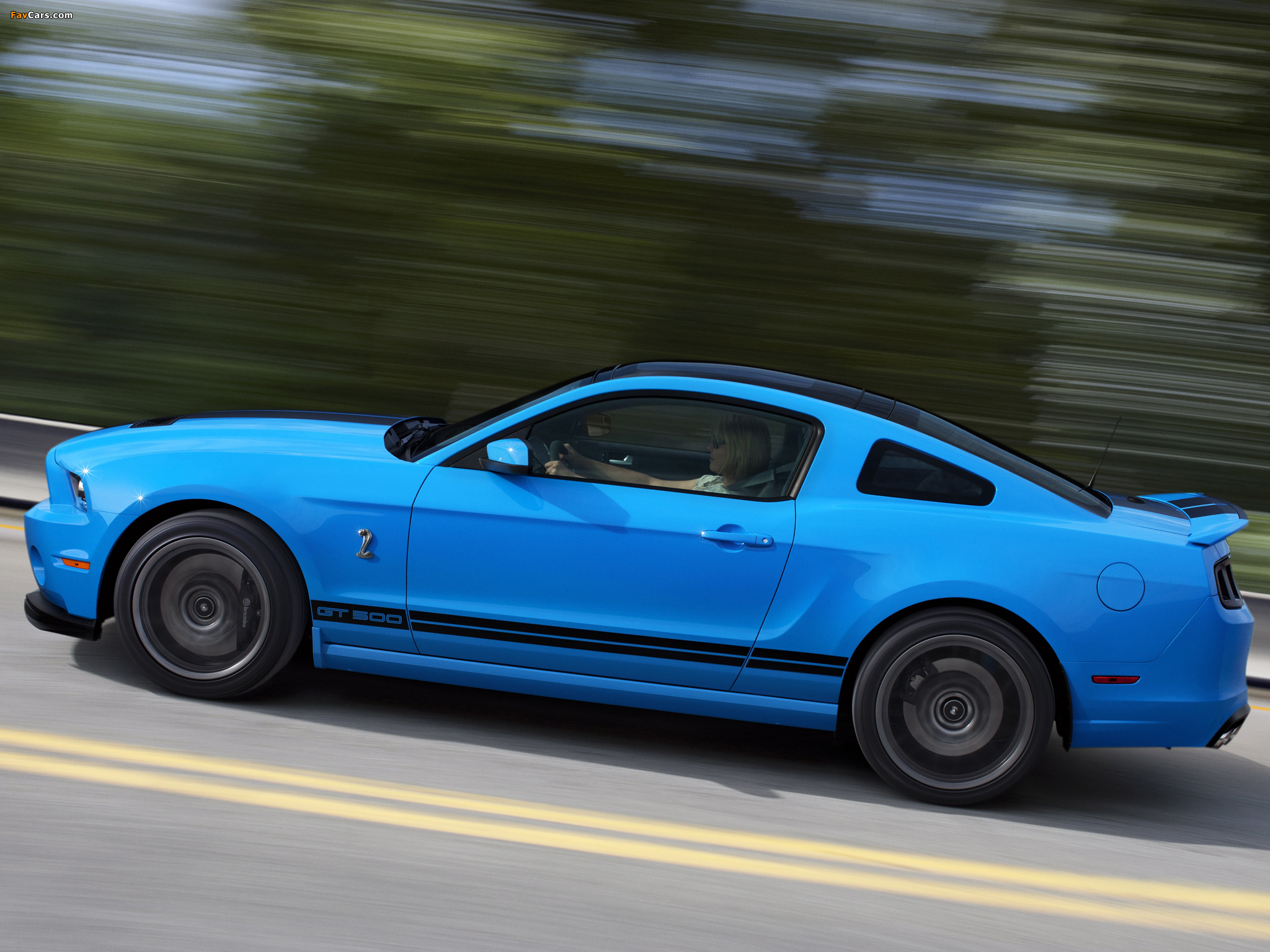 Pictures of Shelby GT500 SVT 2012 (2048 x 1536)