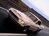 Shelby GT500 1968 photos