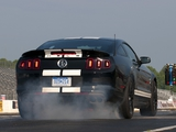 Shelby GT500 SVT 2012 photos