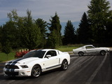 Shelby GT500 images