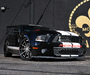 MCP Racing Shelby GT900 2010 images