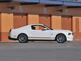 Images of Shelby GTS 50th Anniversary 2012